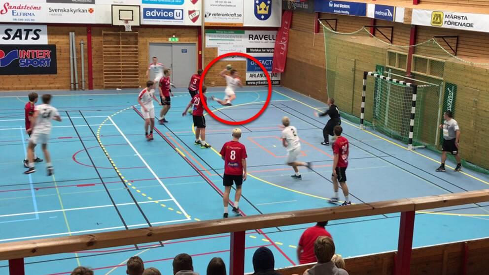 Halmstad handboll
