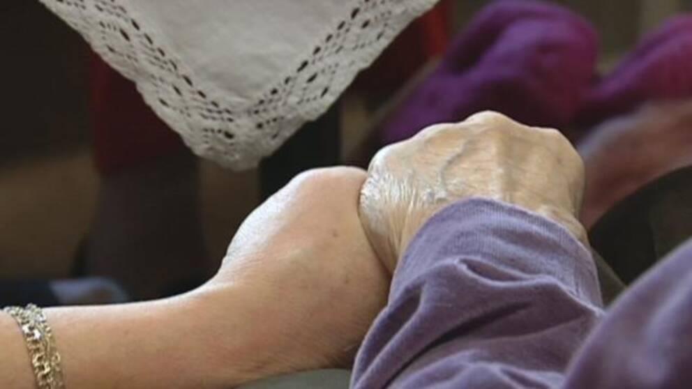 Akut brist pa specialistskoterskor inom aldrevard