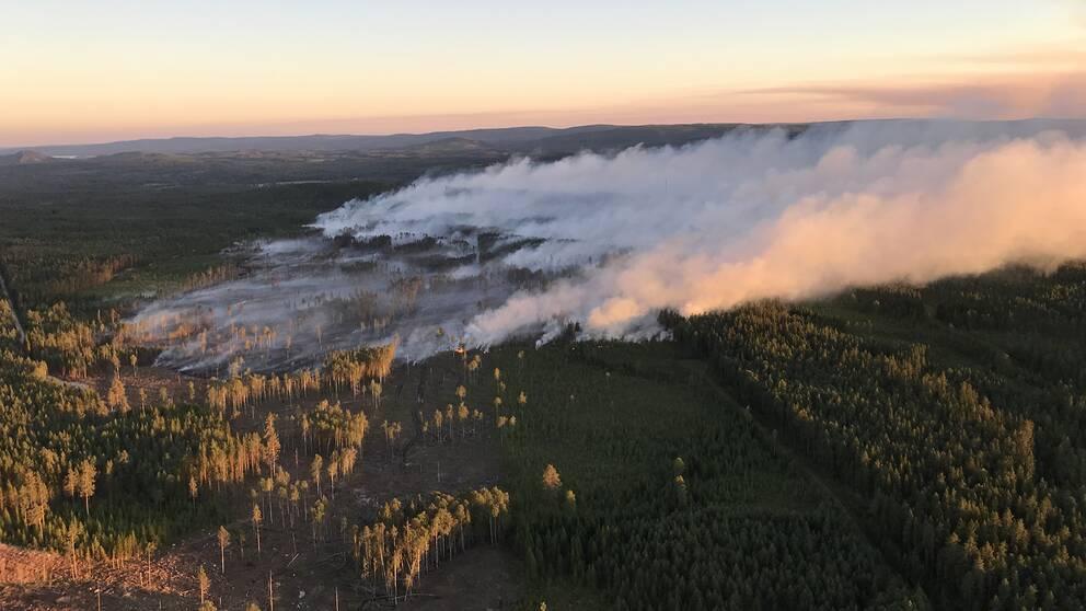 flygbild över rökutvecklingen från skogsbrand