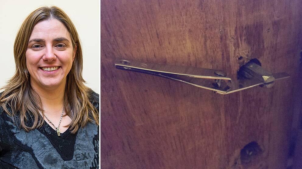 Anna Troberg, partiledare för Piratpartiet, lyckades på tisdagen bli instängd på sin egen toalett av sin katt.