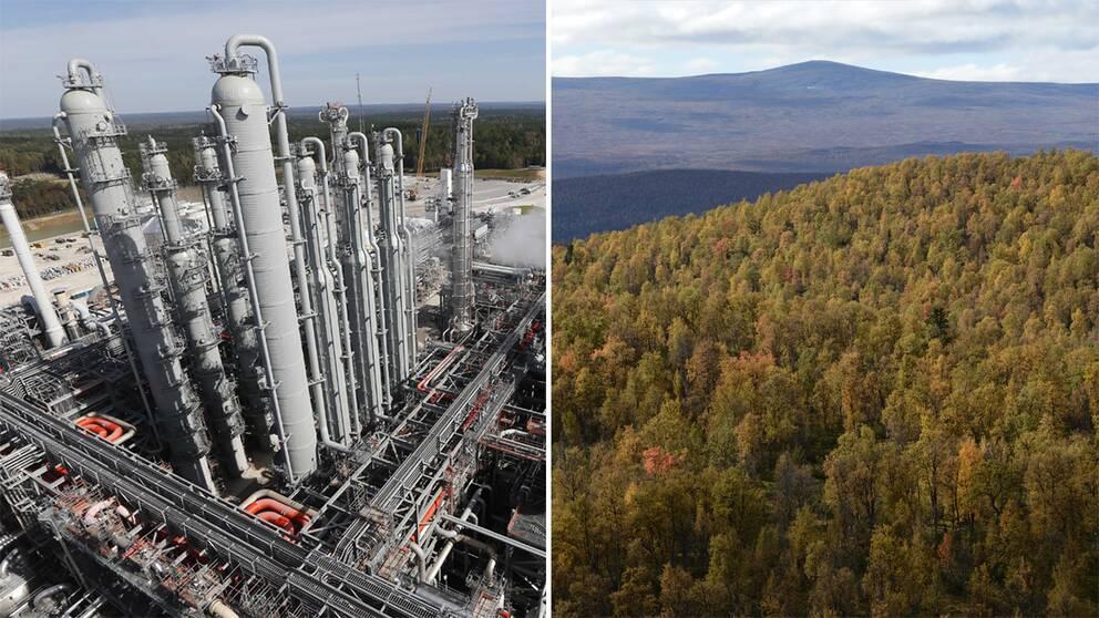 Till vänster anläggning för carbon storage, till höger trädtoppar i skog.