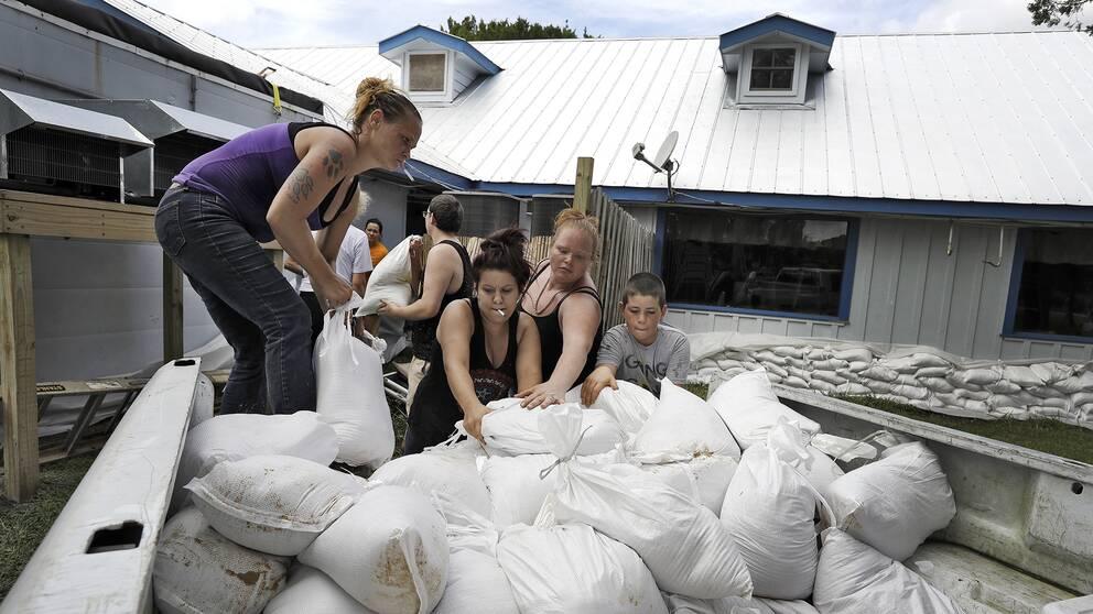 Anställda vid en restaurang i Homosassa, Florida, förbereder sig för orkanen Michael genom att placera ut sandsäckar som de hoppas ska kunna skydda deras arbetsplats.
