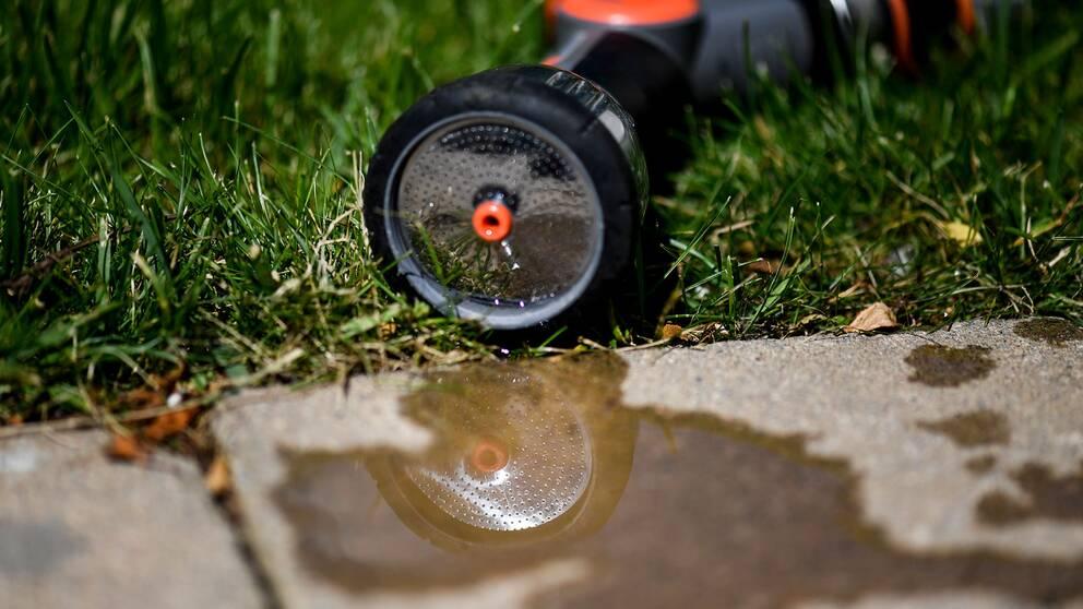 munstycke för vattning i gräs