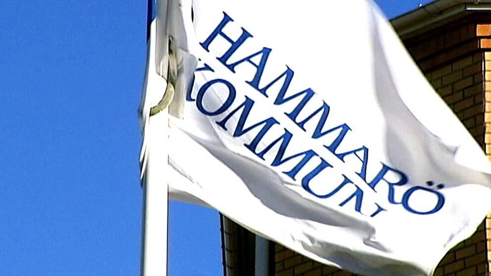 Hammarö kommunflagga
