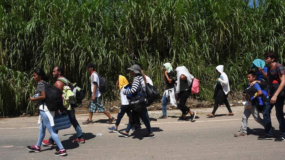 Migranter från Honduras på väg mot USA.
