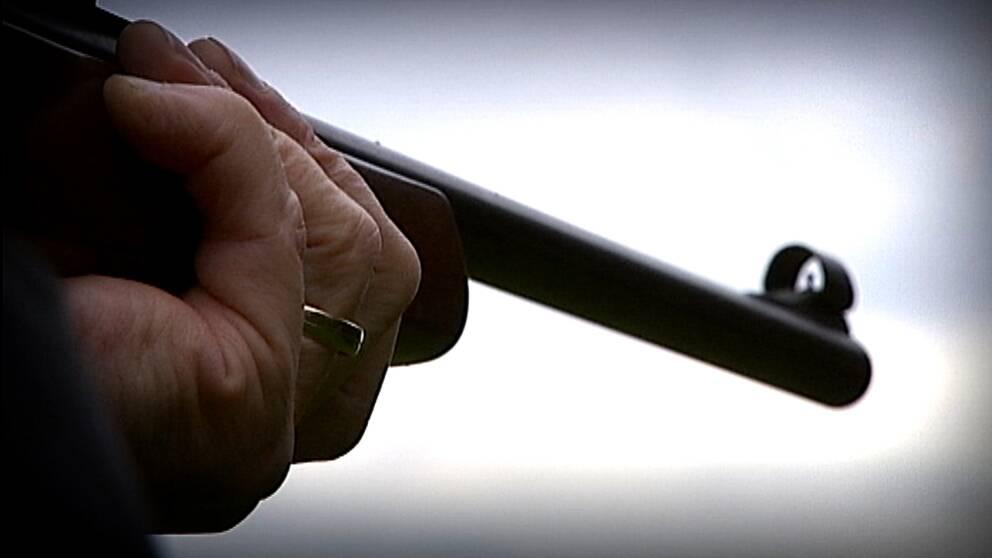 Doms for skott mot villaagare