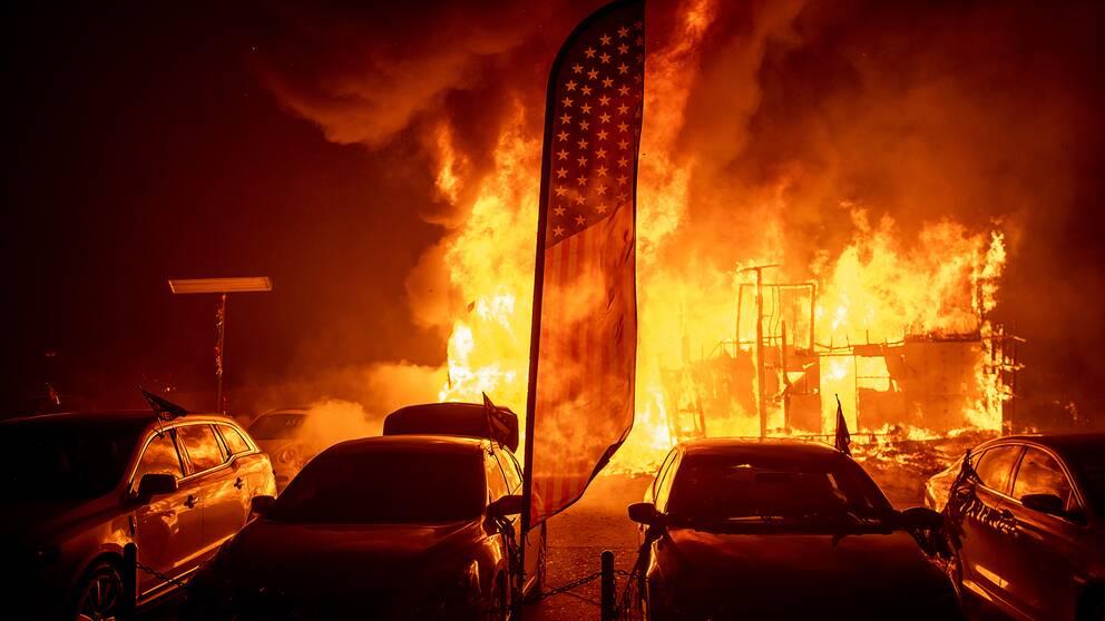 En bilhandelsfirma går upp i rök i Paradise i Kalifornien.