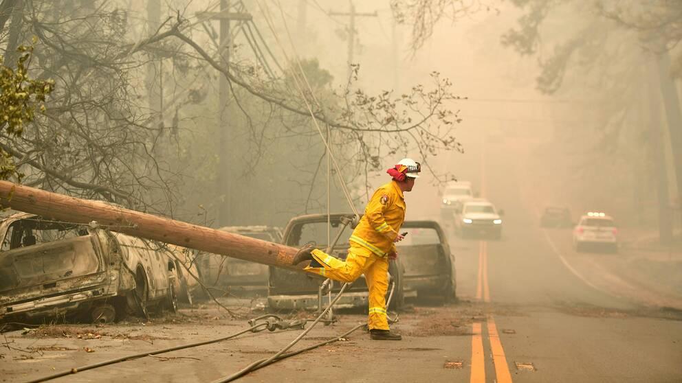 En brandman vid utbrända bilar utanför staden Paradise, som härjats svårt av eden.
