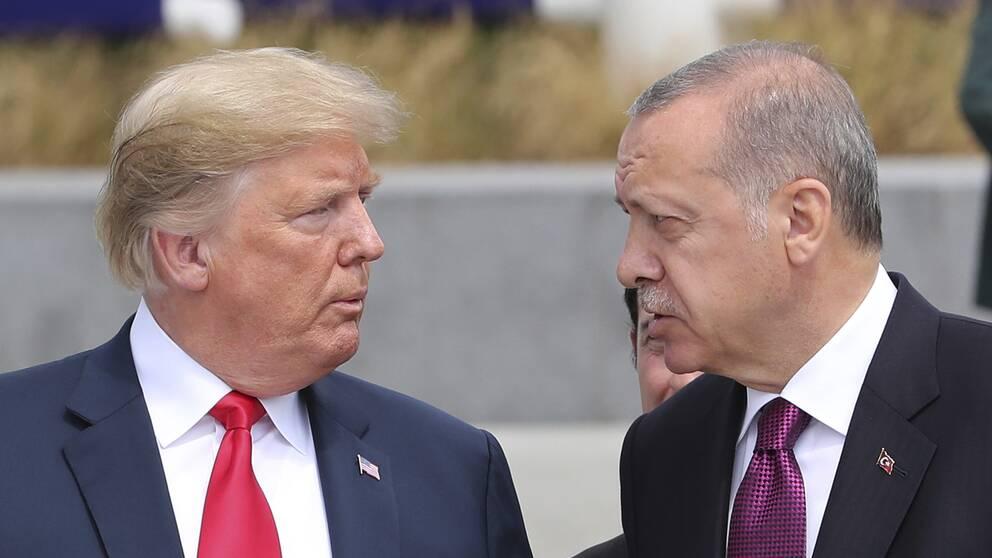 USA:s president Donald Trump och Turkiets president Recep Tayyip Erdogan. Arkivbild från i somras.