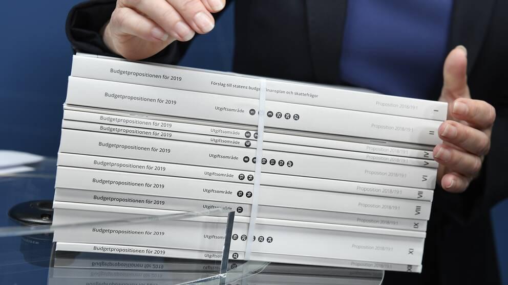 Fler nyheter i regeringens budget
