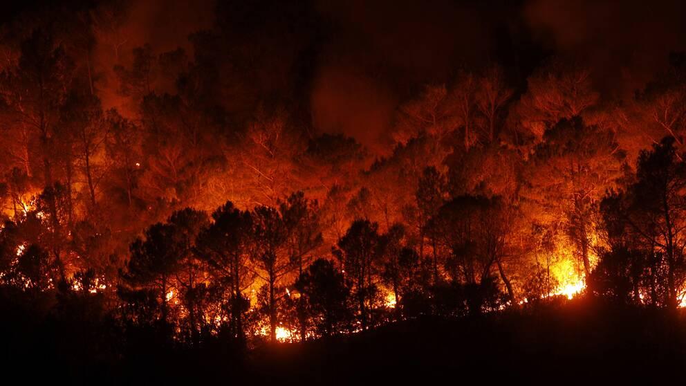 Bilden tagen under måndagen visar skogsbränder nära Boadella i den spanska provinsen Girona.