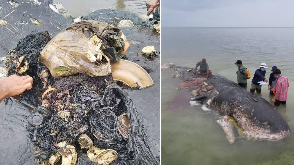 Kina, Filippinerna, Vietnam, Thailand och just Indonesien står ensamma för 60 procent av det plastskräp som finns i haven.