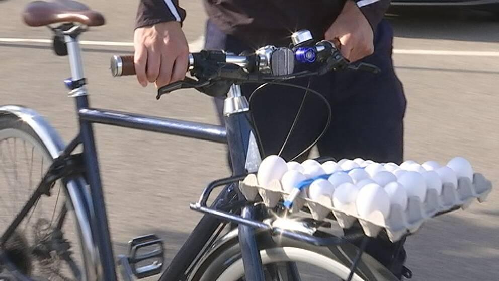 ägg, cykel, reko-ring
