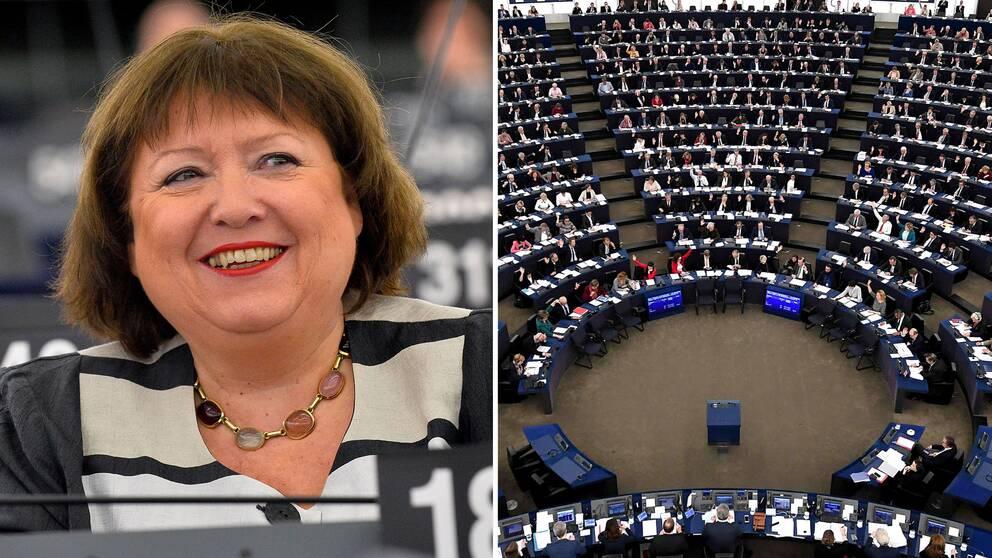 EU-parlamentet fick inte sin vilja igenom. Dagmar Roth-Behrendt, socialdemokratisk EU-parlamentariker, var en av dem som kämpade för hårdare regler.