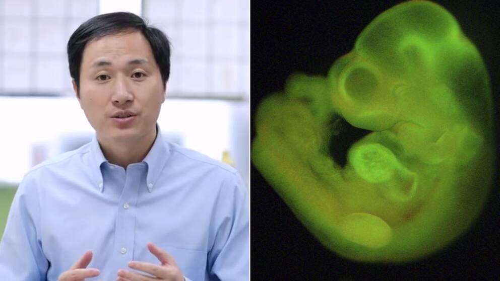 Den kinesiska forskaren He Jiankuis och en bild på ett embryo.