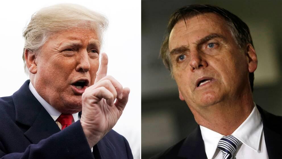 USA:s president Donald Trump och Brasiliens tillträdande president Jair Bolsonaro.