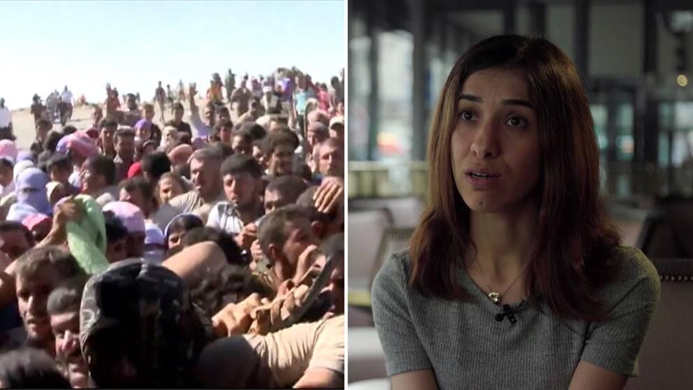 Yazidier som flyr IS och Nadia Murad