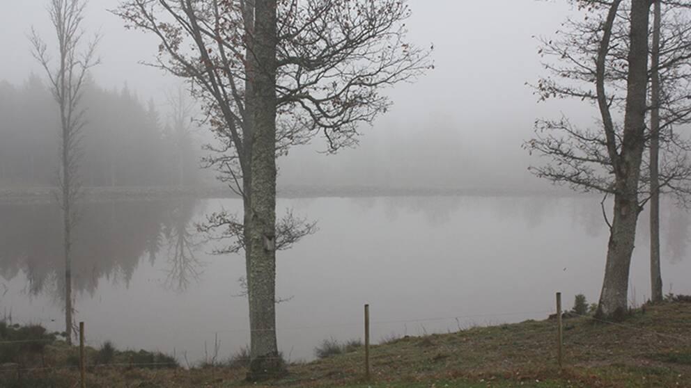Dimma över sjö