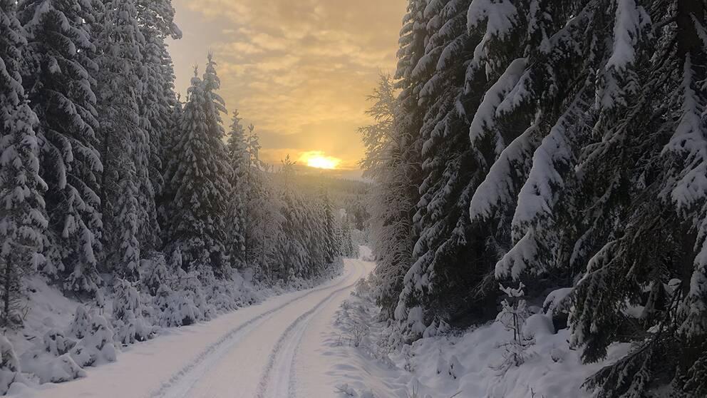 Lekvattnet i Värmland.