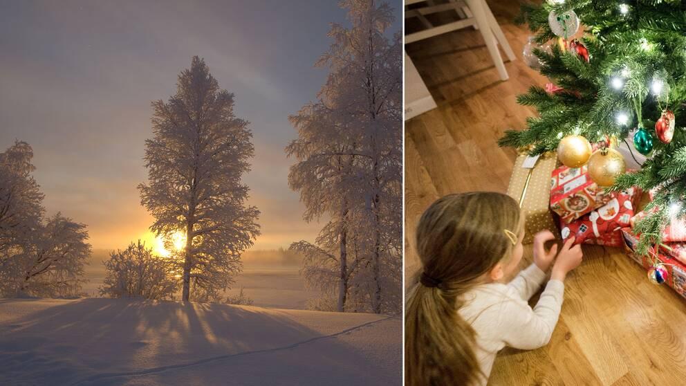 Snöklätt landskap och en flicka med julklappar under en pyntad julgran