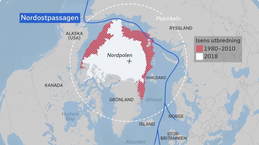 Grafik som visar Nordostpassagen genom Arktis och issmälning. Källa Bremens universitet, Tyskland.