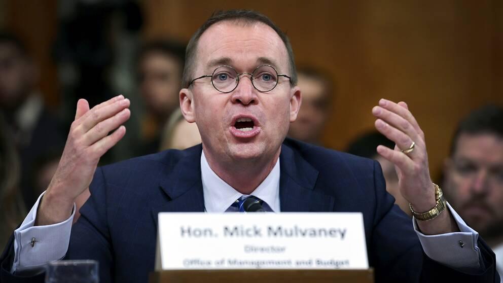 Budgetchefen vid Vita huset, Mick Mulvaney, tar nu över som president Donald Trumps stabschef i USA.