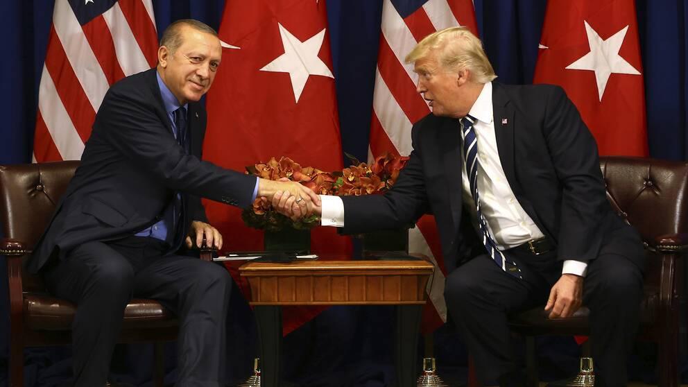 Turkiske presidenten Recep Tayyip Erdogan skakar hand inför ett möte 2017.