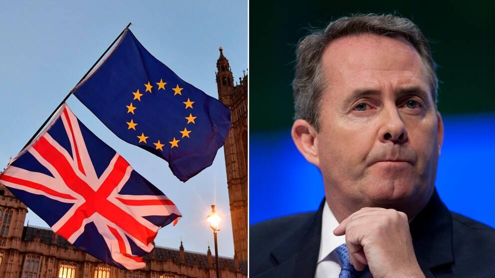 Nordirland far inte lagga veto om brexit