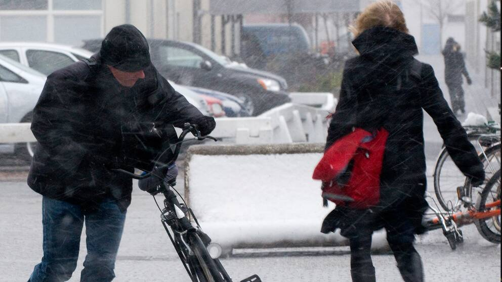 Nyårsvädret kan bli både blåsigt och disigt. Arkivbild.