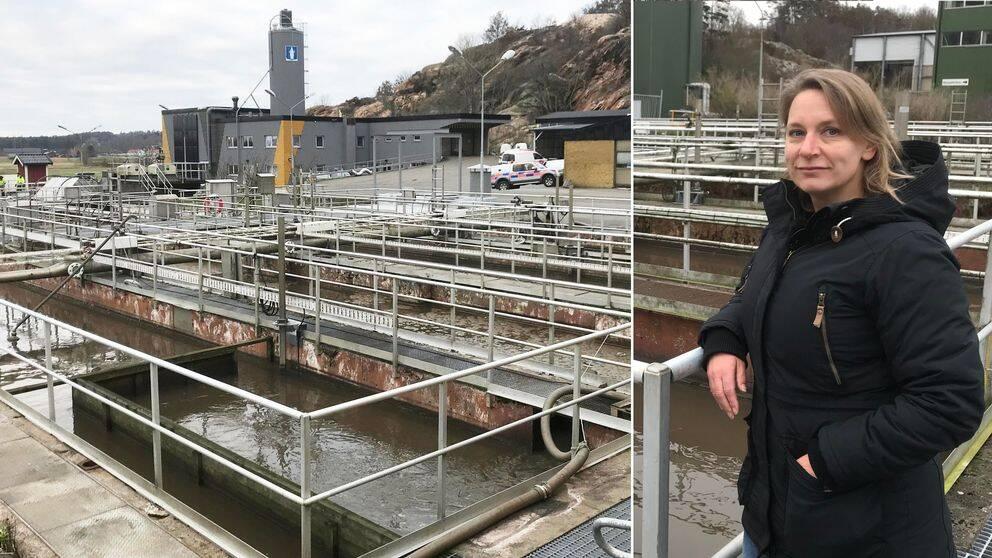 Åsa Vester är VA-projektledare på Kungsbacka kommun. Hon understryker vikten av att Hammargårds reningsverk uppgraderas.