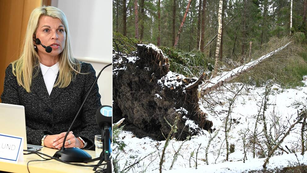 Annika Viklund, vd Vattenfall Eldistribution, talar vid en pressträff tillsammans med Norrtälje kommun med anledning av stormen Alfrida.