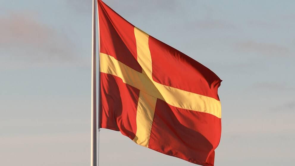 Skånsk flagga med gult kors och röda fält.