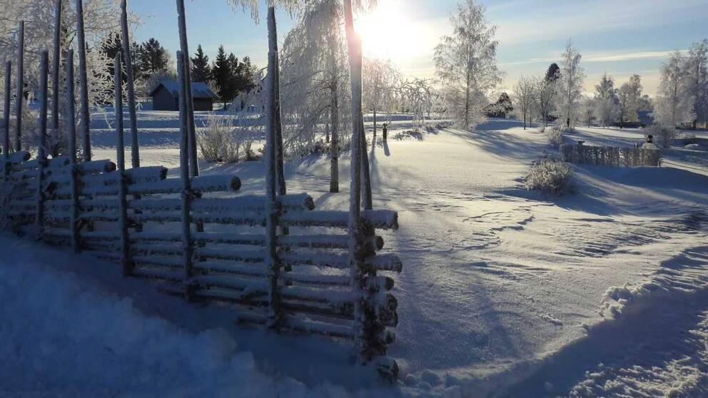 solig, snöig vy med gärdesgård
