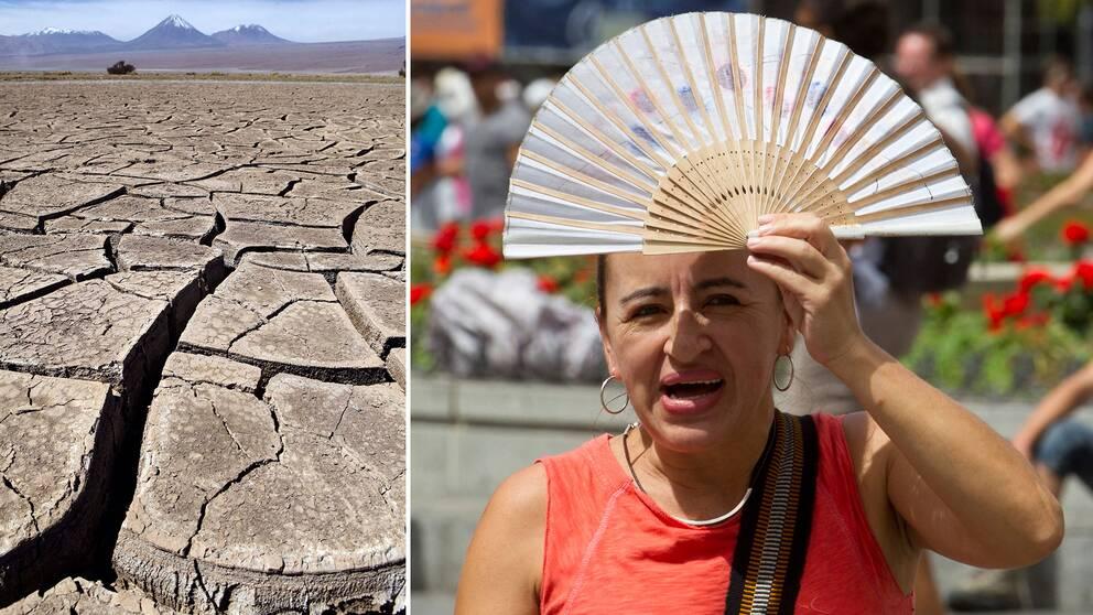 Sommartemperaturen i till exempel Spanien steg till över 40 grader under 2018