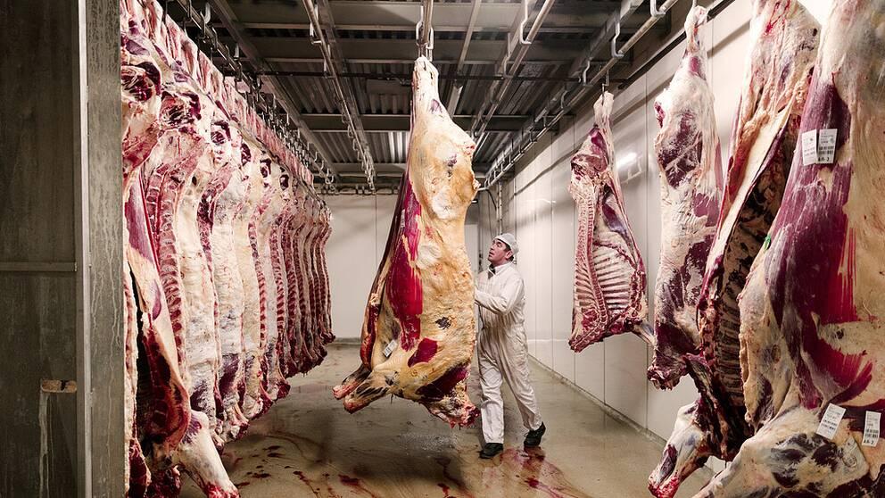 Det gäller samma regler för besiktning och kontroll av kött i alla EU-länder. Arkivbild.