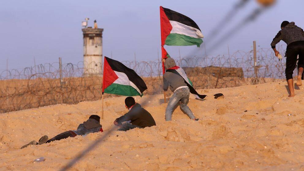 """""""Hamzeh Dalis kommer från Gaza, en del av Palestina som man för närvarande i princip inte avvisar/utvisar någon till på grund av säkerhetsläget"""", menar parets advokat Kristian Larsson i Karlskrona."""