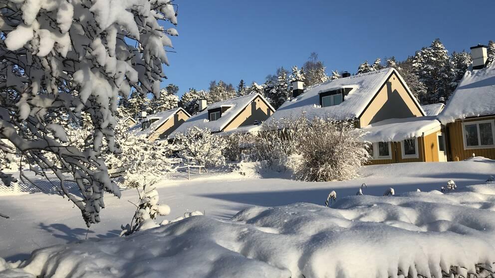 Ellagård i Täby när det är som vackrast! Taget i morse (4 febr). Snödjup ca 40 cm. Solen tittade fram i en timme. Därefter mulet hela dagen. 13,5 gr kallt under natten. (Täby är ett köldhål).