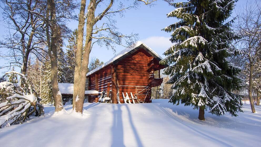 Ett vintrigt Gammelhus i Östhammar, från dagens eftermiddagspromenad, den 4 feb.