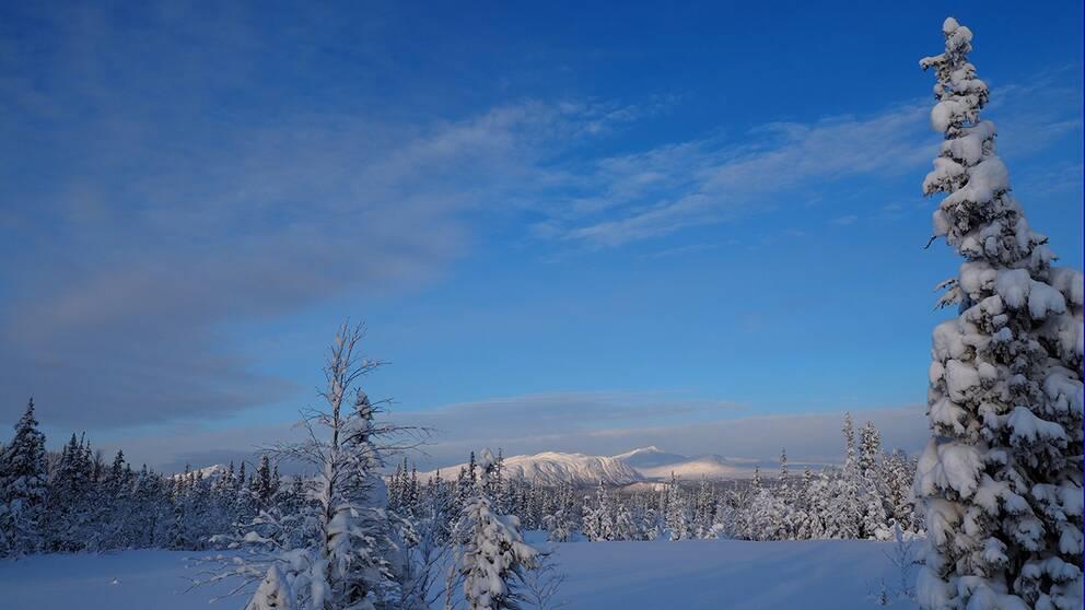 Lunchtur upp till Krokenstugan. Hela helgen har det snöat kraftigt, vi fick nästa ploga skidspåren till vasaloppsfolket som är och tränar på helgerna.