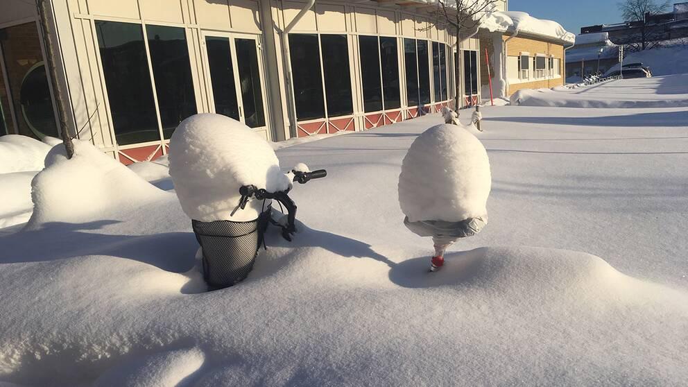 Balderskolan i Skellefteå den 5 februari.