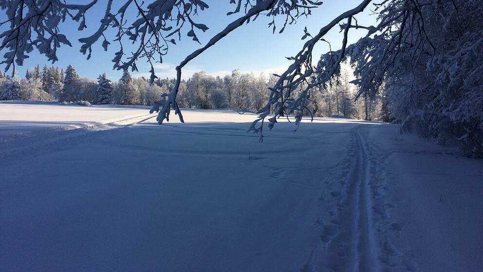 Underbar skidtur på Frösön i dag 5 feb. på förmiddagen, -18 grader, vindstilla, blå himmel.
