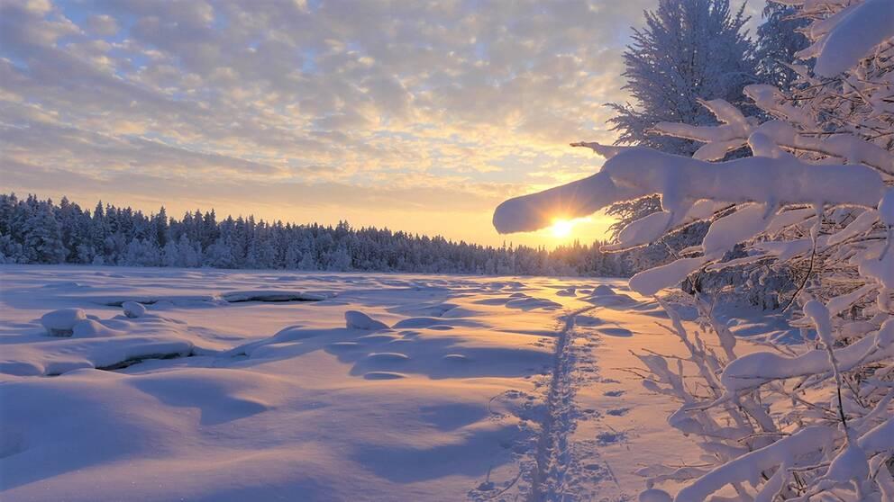 En krispig och kall morron -25 grader vid Torneälven i Junosuando Norrbotten den 5 februari.