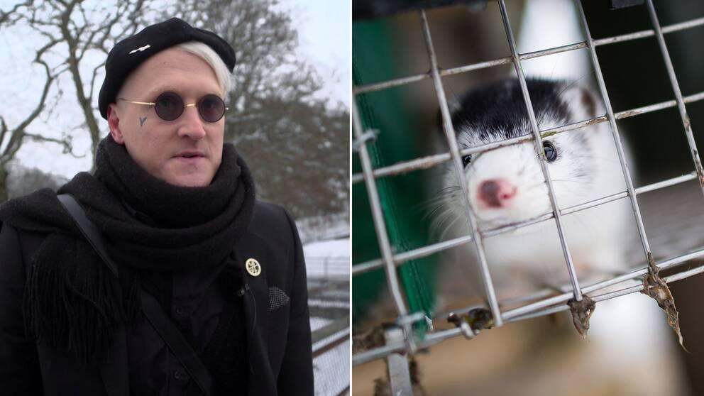Richii Klinsmeister och en mink i bur