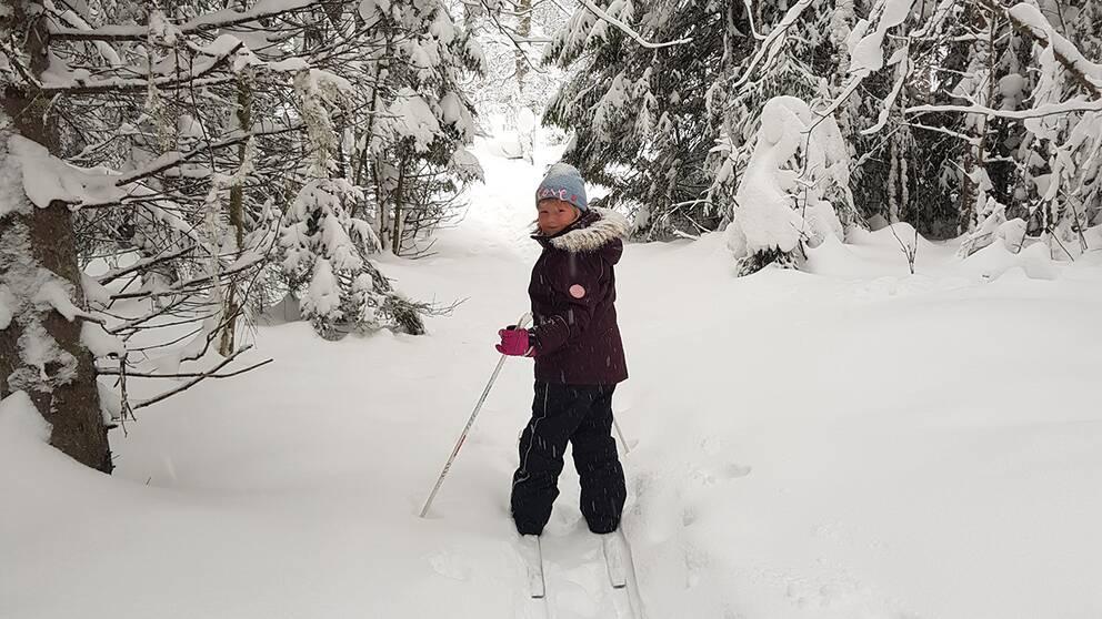 Erica Östman , umeå, tar en skidtur i ett vintrigt snöigt Umeå, idag, sön morgon vid 9.30, och ca 5 minus.