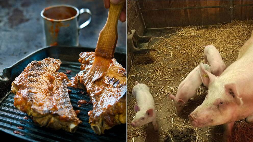 Svenskt griskött blir mer populär efter debatt.