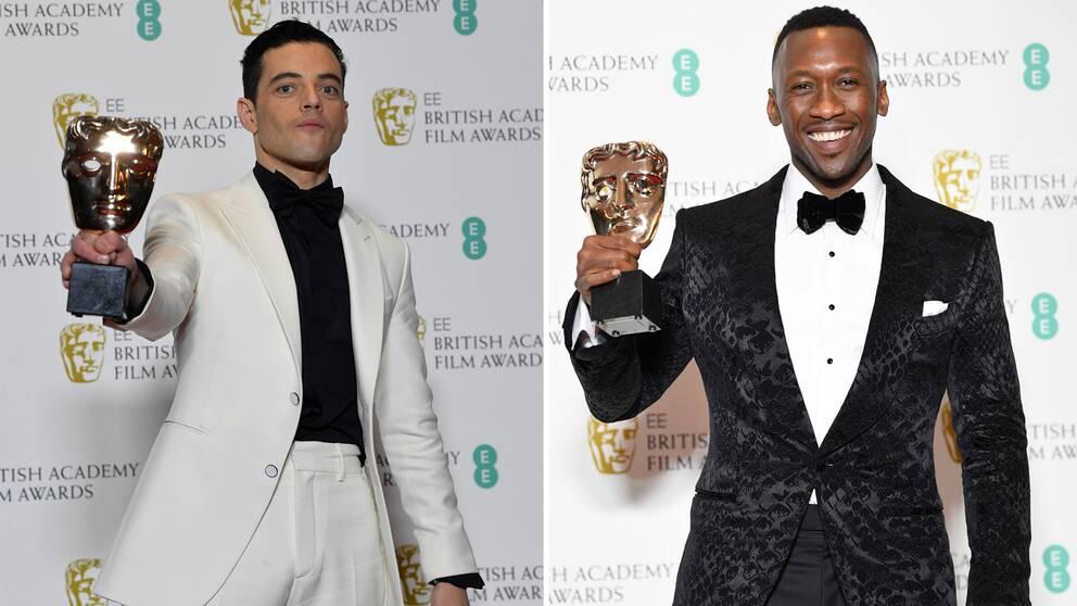 De manliga skådespelarpriserna gick till Rami Malek för Bohemian rhapsody och Mahershala Ali för Green book.