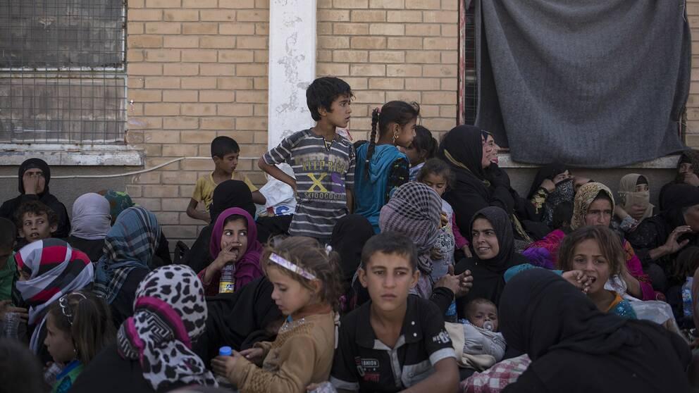 Barn i olika åldrar sitter utanför en byggnad i Irak.