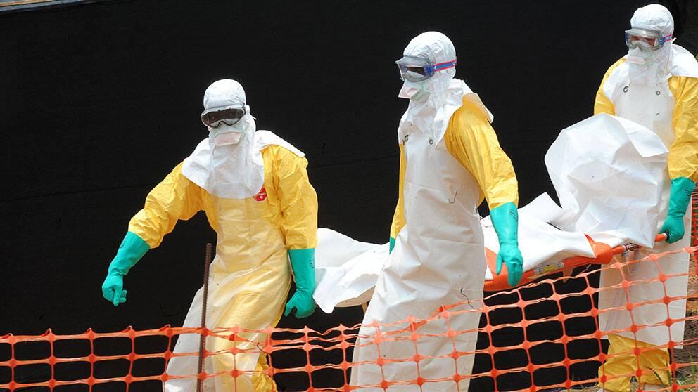 Who ebola utbrott i guinea over