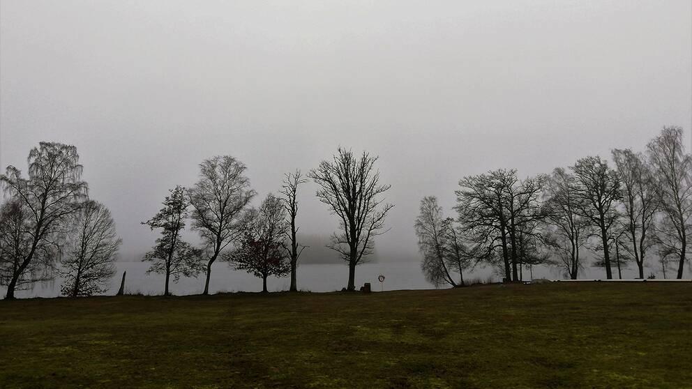 Dis och dimma vid Araby, Växjö 7 mars.