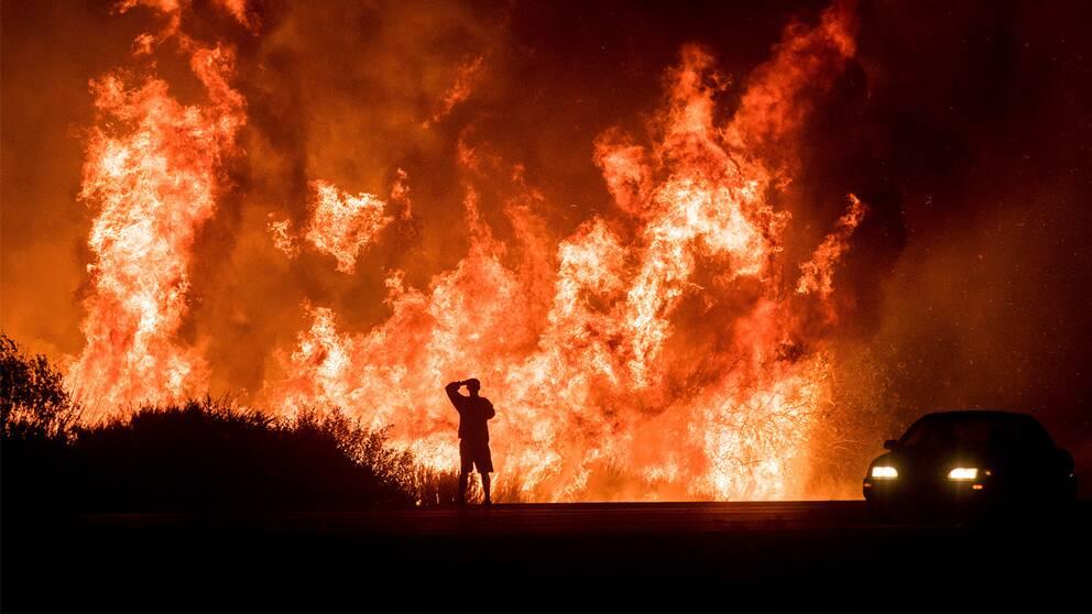 Ensam man framför stor brand.